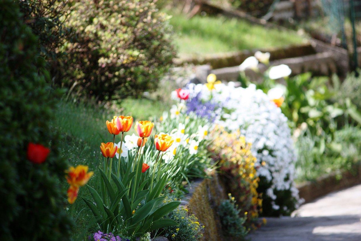 Garten Kosten & Preise   Aroundhome